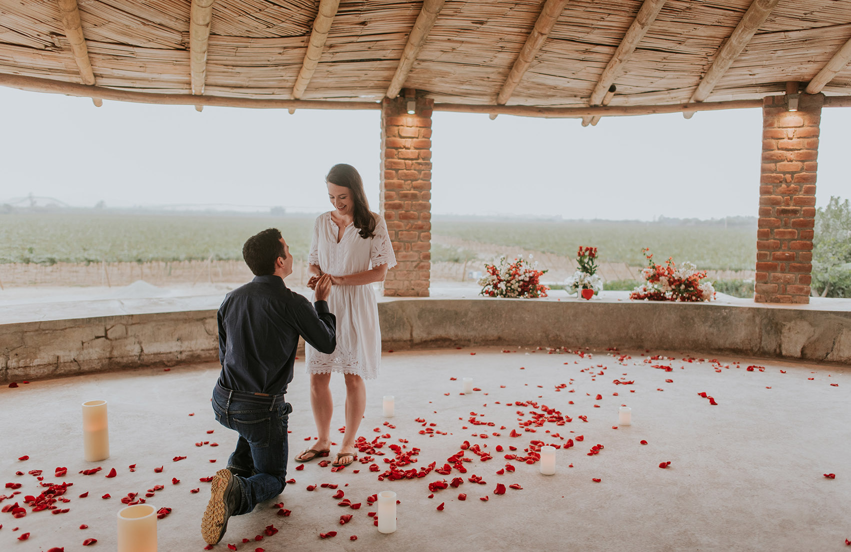 Vineyard Wedding Proposal